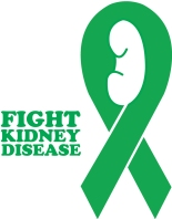 kidney-ribbon